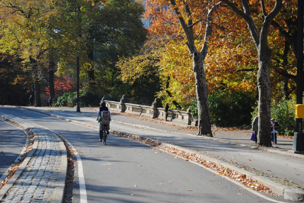 Central Park Fall Bike ride