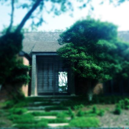 East Hampton House: Tinto 1884 lens, Blanko Freedom 13 film