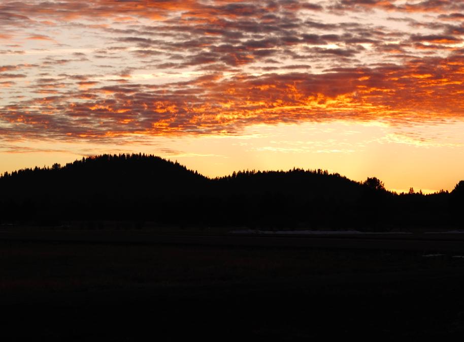 Oregon skies.