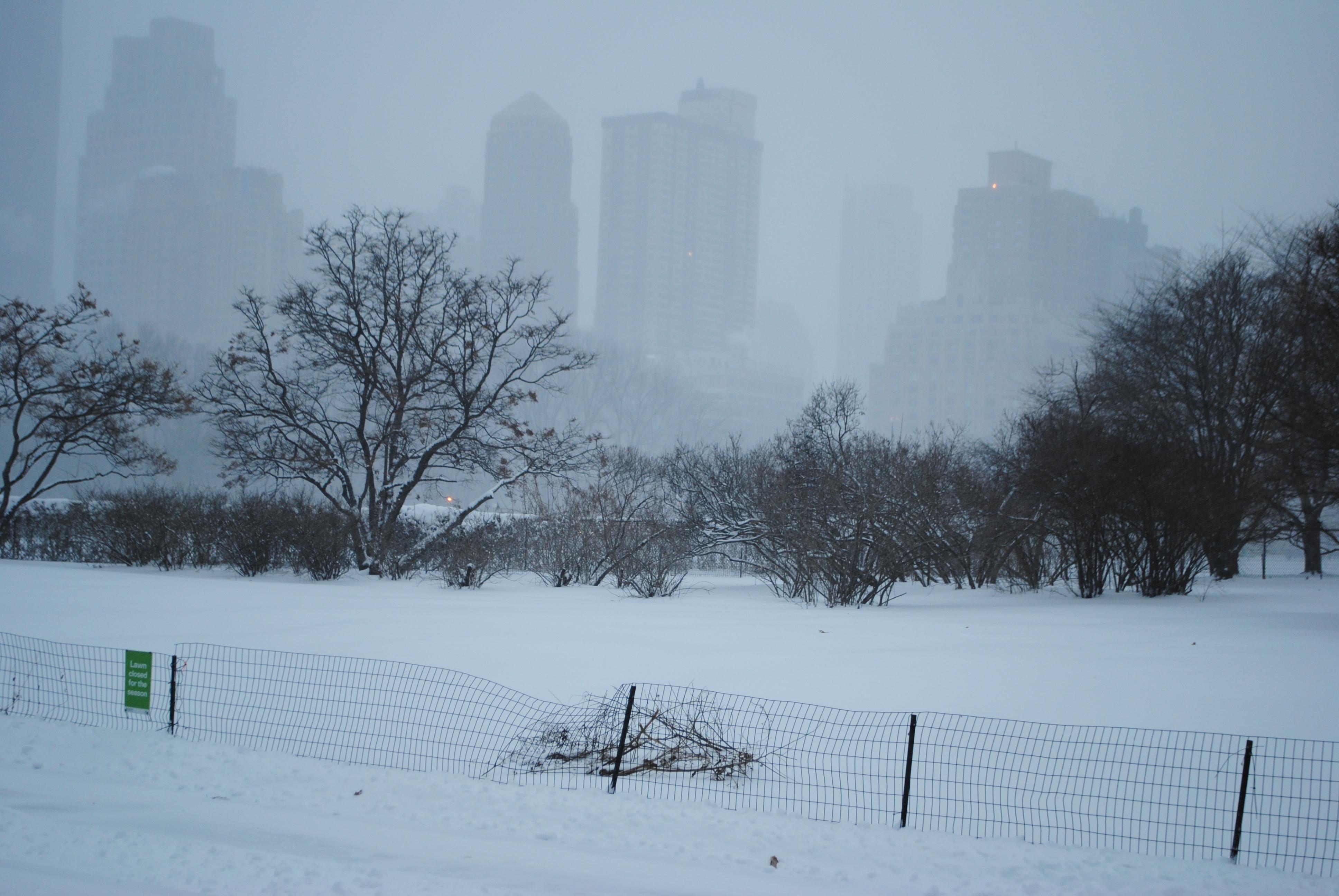 Central Park West skyline