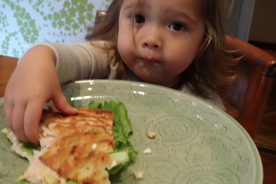 Even Baby Toosh wanted in on the tuna artichoke action.
