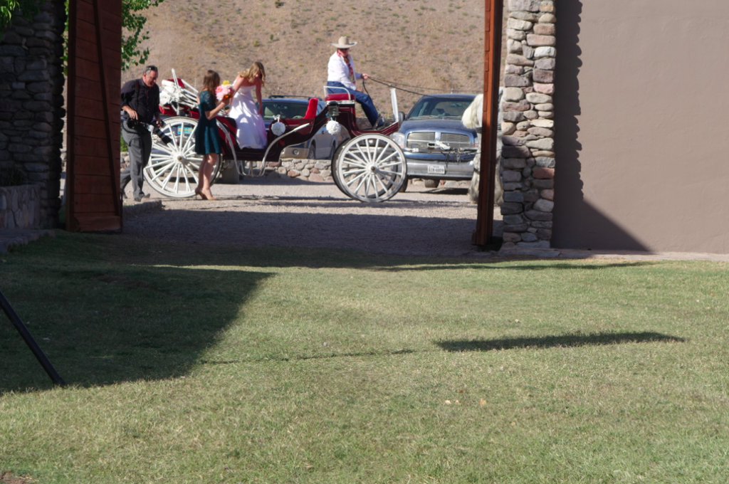 Stephanie, the beautiful bride, arriving at the ceremony via horse and cariaige.