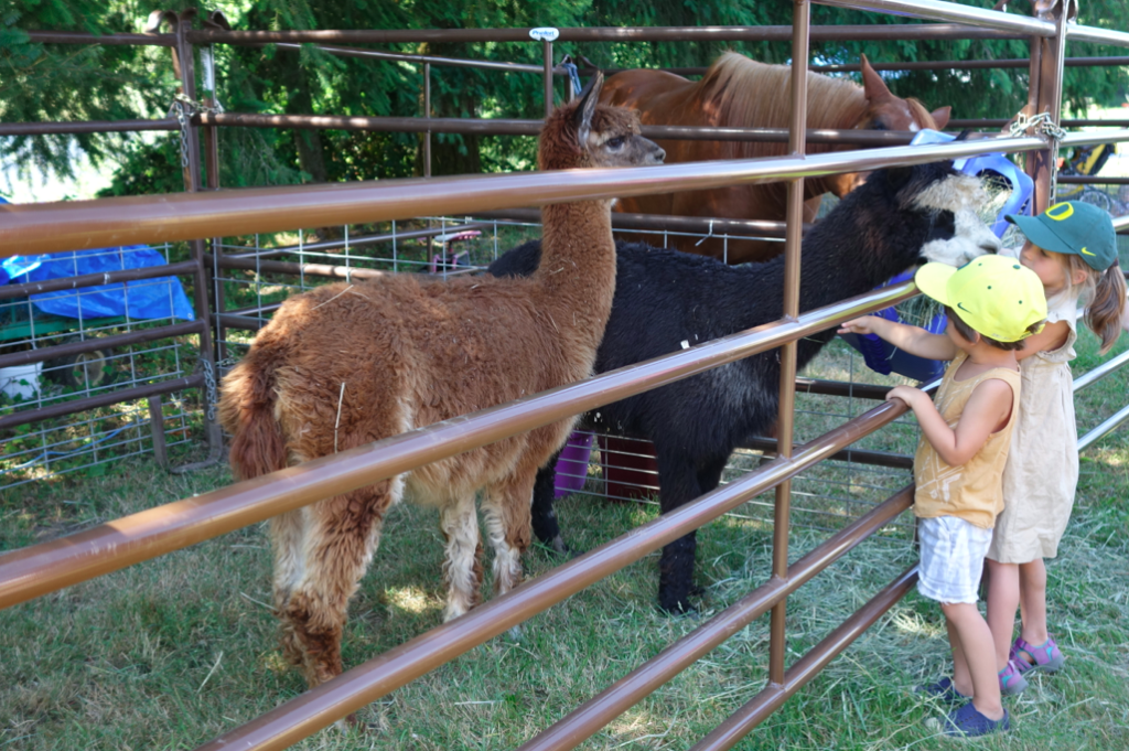 Petting farm for the kids to feed and pet the animals. A big hit.