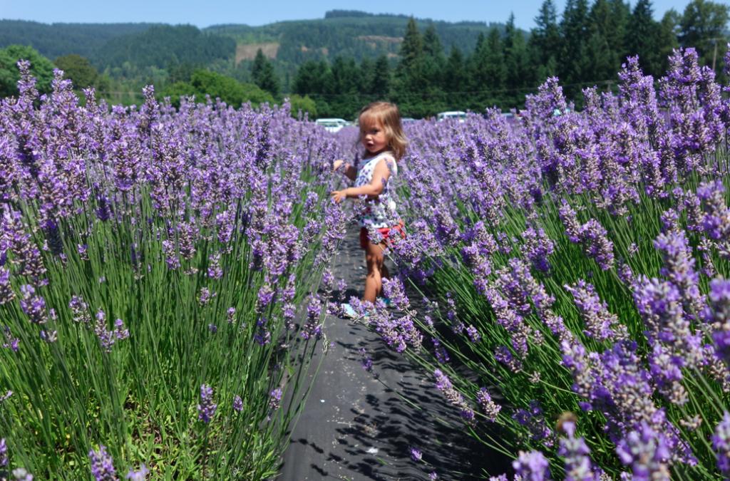 little girl in fields