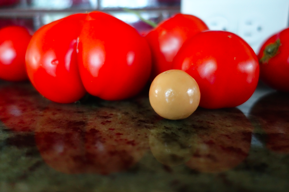 Comparison in size of malt balls vs. tomatoes.