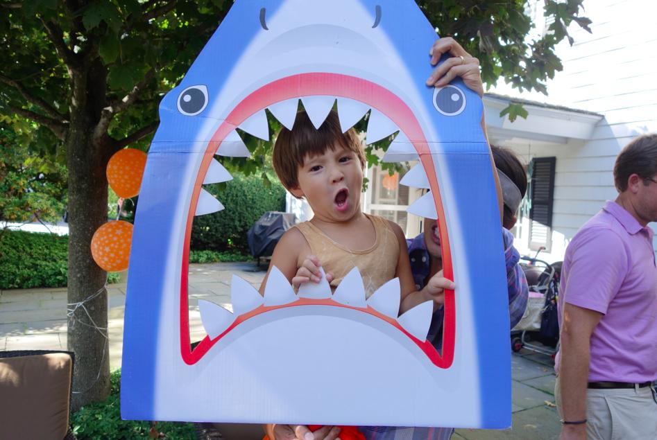 Scary shark face