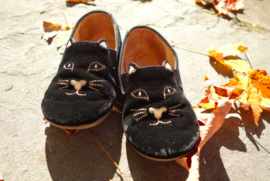 Kitty shoes!