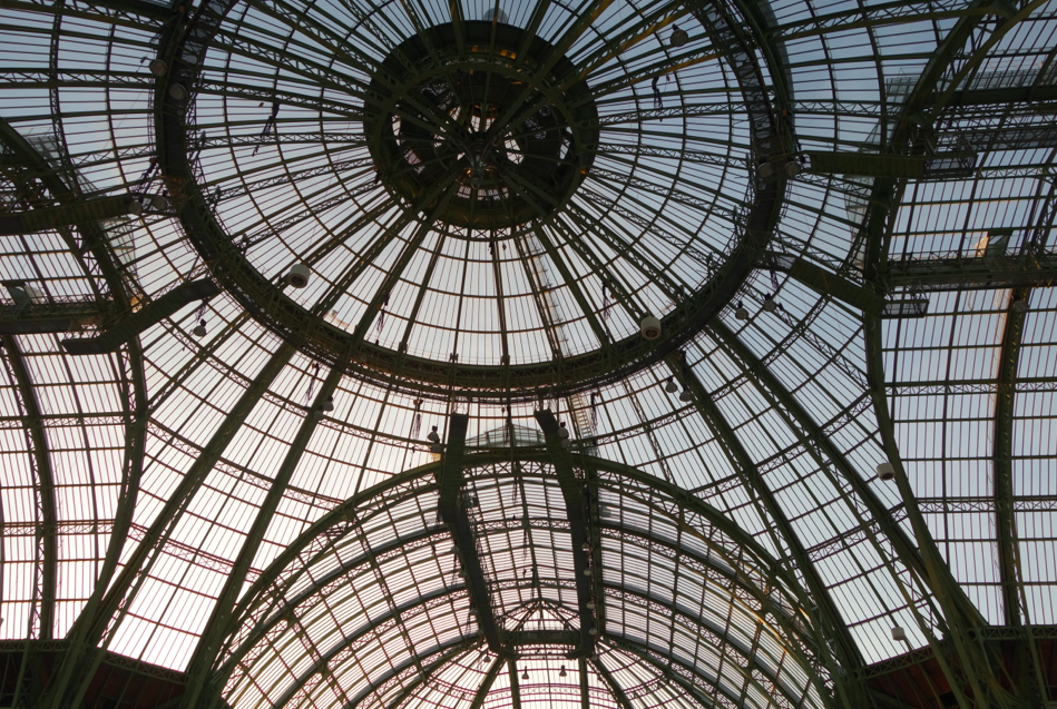 Inside the Grand Palais (at an art fair, but the most interesting thing -- besides the French Female style, more on that later -- was the roof!)