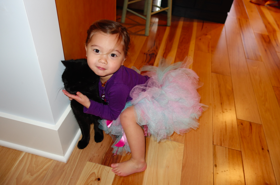 Lots of tutus and cuddling with Jasper, the cat.