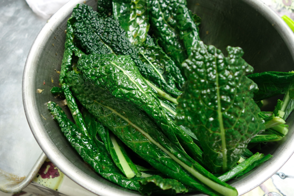 Coated kale
