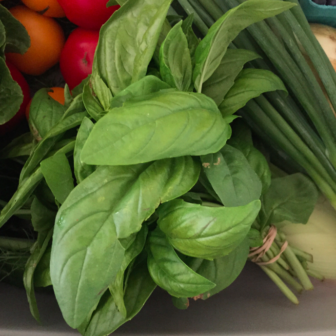 We add basil to the top of any salad.