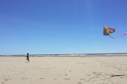 Running with this playlist kinda makes me feel like I am a little kid chasing after a kite (picture from Early August 2015 of Cruzzie at the Oregon Coast).