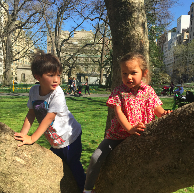 "City kids ""climbing"" trees."