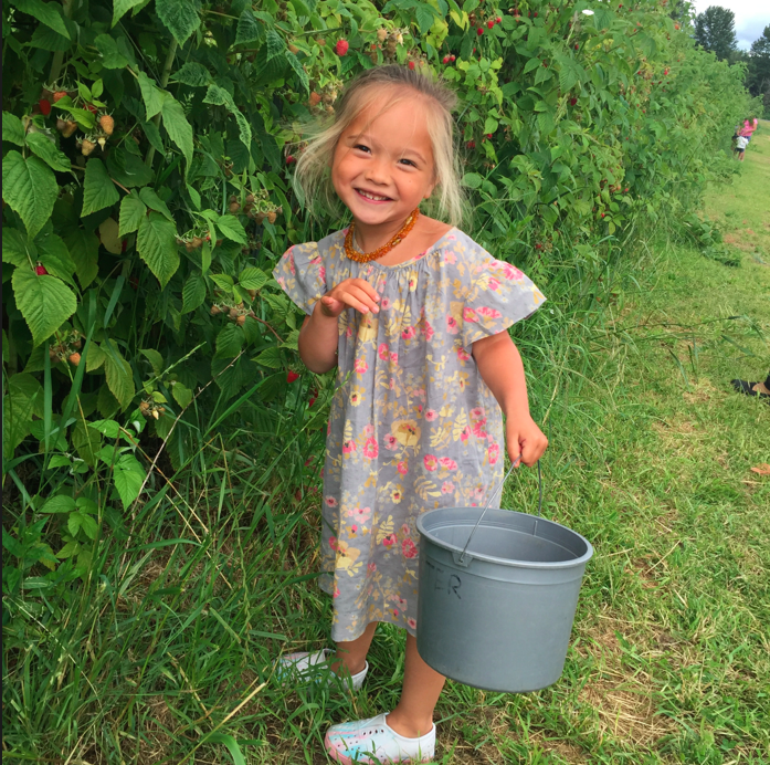 My raspberry picker.