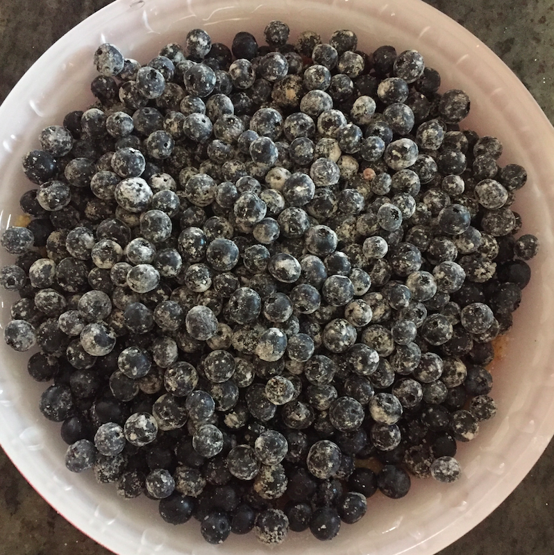Blueberries in the pie shell.