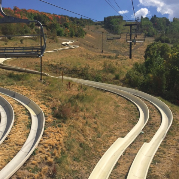 Alpine slide. We must have done this about 10 times.