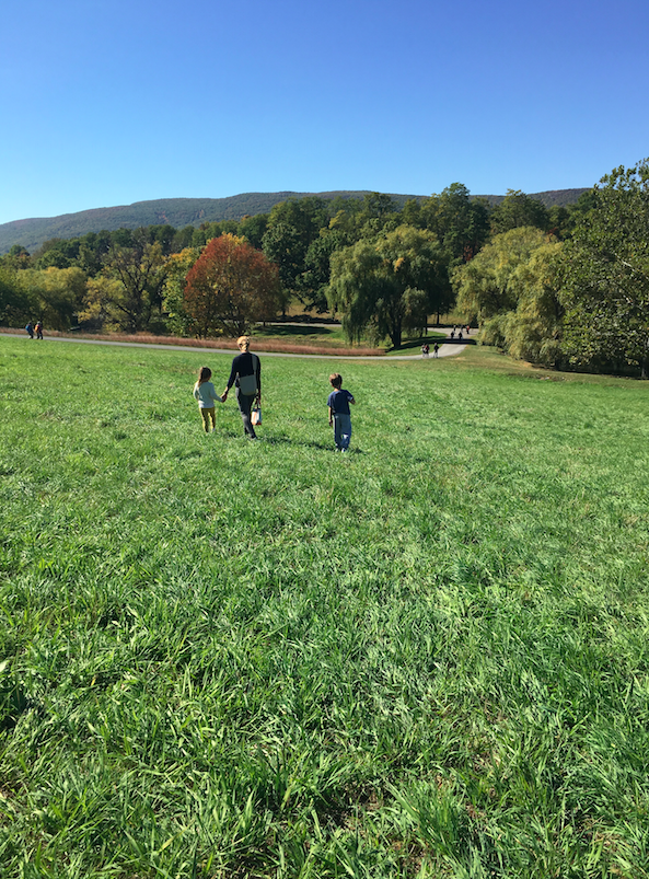 Yes, basically rolling hills. And beautiful, indeed. The leaves were changing and it was story-picture-perfect weather and beauty.