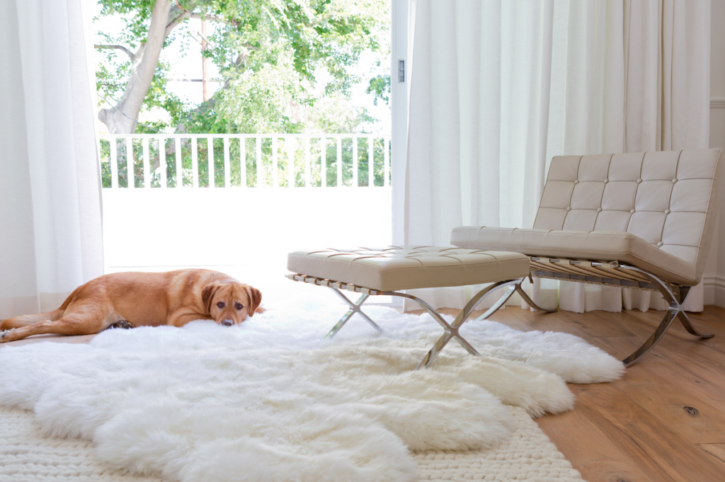 Luxurious sheepskin room, designed by 22 Interiors, photo by Amy B