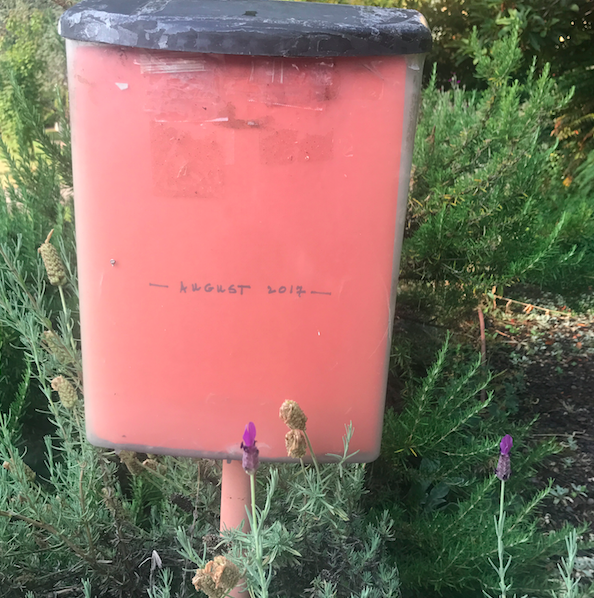 Two blocks from my parents house is this mailbox with the poetry. They change it once a month.